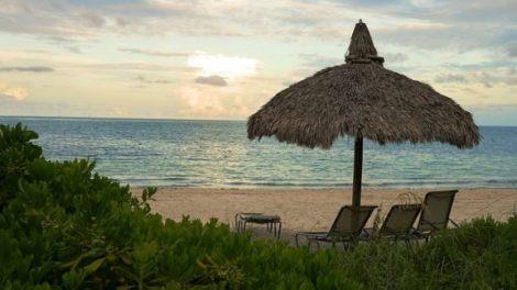 beach 967980 640 e1470063998232 470x264 - The Best Miami Beaches, Summer of 2016