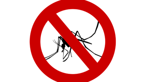 mosquito 470x264 - Aerial spraying for mosquito control in Miami