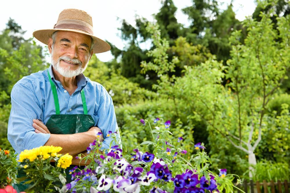 shutterstock 78532774 - Parques de Miami-Dade fomentan vida saludable a personas mayores