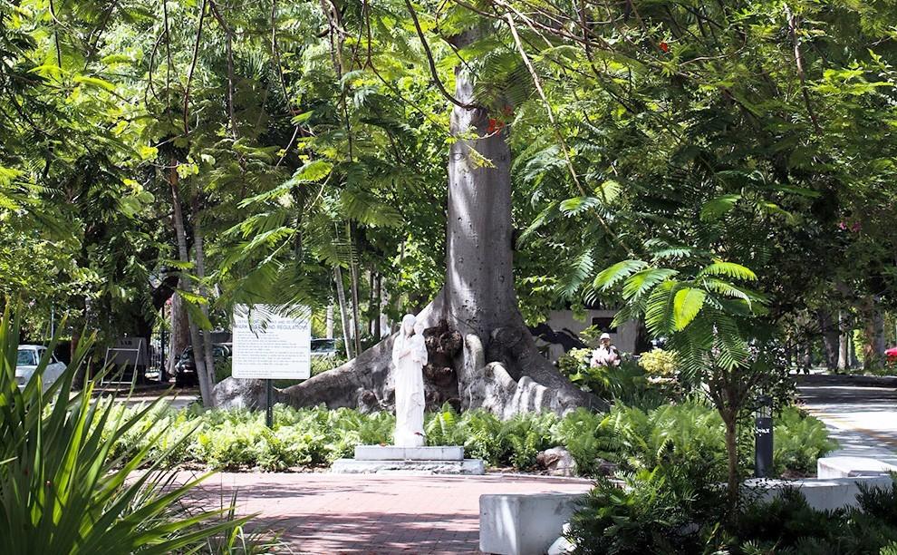 CUBAN MEMORIAL BOULEVARD - 8 cosas que los locales pueden hacer en la Calle 8