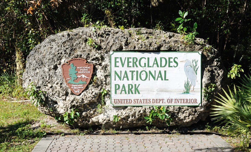 everglades national park - The best activities for your trip to Miami