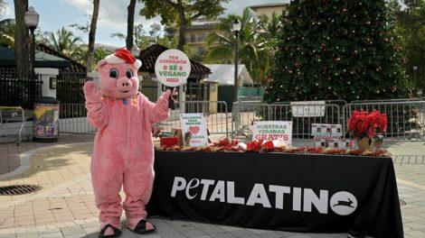 PETA Latino