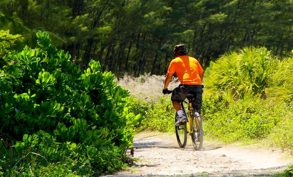 virginia key biking trail - Start 2021 off right with Miami Health and Wellness Months